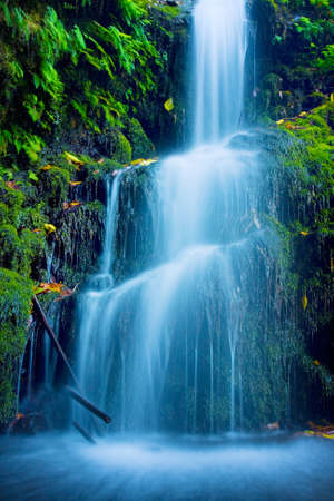 Beautiful Lush Waterfall Banque d'images