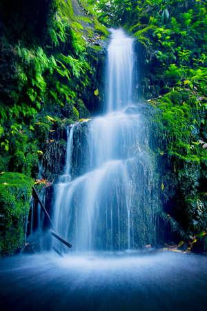 waterfall in forest: Beautiful Lush Waterfall Stock Photo