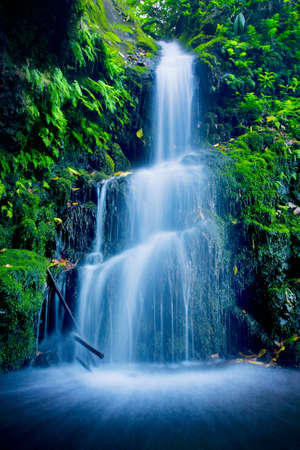 Beautiful Lush Waterfall Standard-Bild