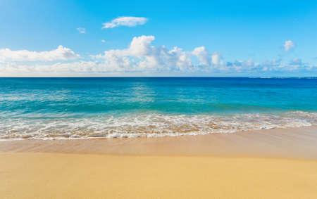 beach scene: beach and tropical sea