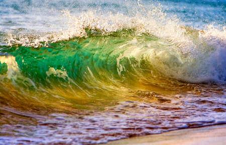 watersports: beautiful ocean wave at sunset