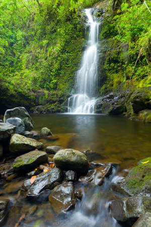 Beautiful Lush Waterfall in Hawaii photo