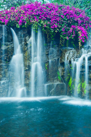 torrent: Beautiful Blue Waterfall in Hawaii