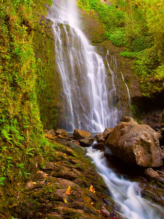 Tropical Hawaiian Waterfall photo