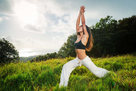 Beautiful Woman Practicing Yoga Outside in Nature Stock Photo - 13613547