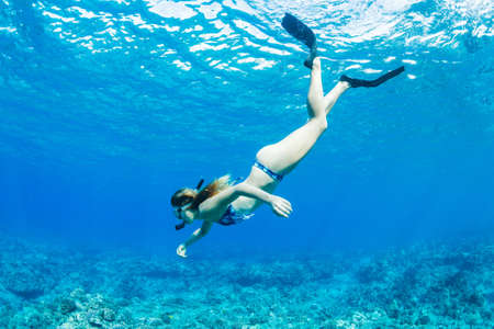 Beautiful Woman Snorkeling in Tropical Ocean Standard-Bild