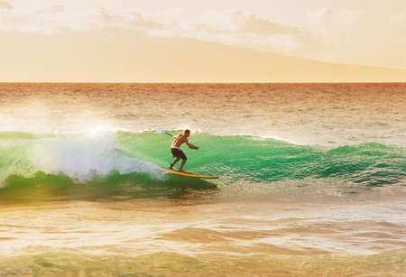 male surfer: Surfer on Beautiful Wave at Sunset  Stock Photo