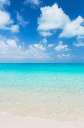 the turks: Tropical White Sand Beach and Sea