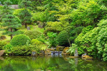 pond: Beautiful Japanese Zen Garden