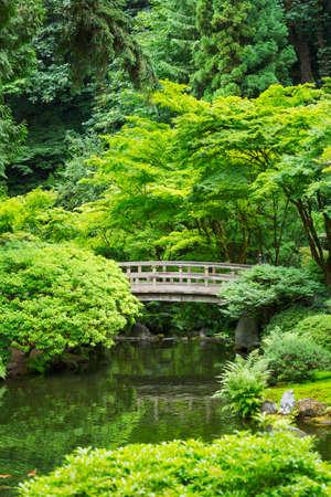ponte giapponese: Bella giapponese Zen Garden
