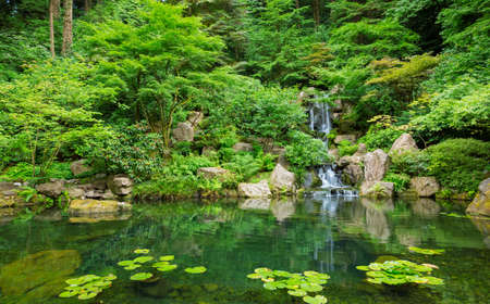 garden pond: Beautiful Japanese Zen Garden