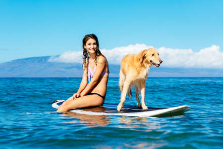 Attractive Young Woman Surfing with her Dog. Sharing surfboard with Golden Retriever. Stock Photo