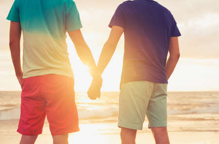 same sex: Happy gay couple holding hands watching sunset on the beach