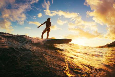 일몰 서핑. 일몰 아름 다운 젊은 여자 승마 웨이브. 야외 활동적인 생활.