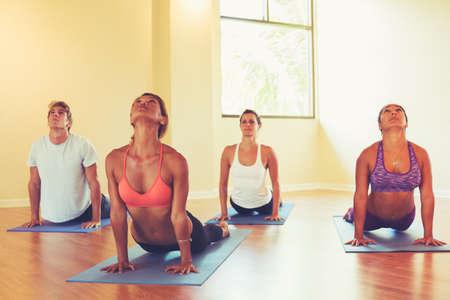 personas saludables: Grupo de personas que se relaja y hacer yoga. La práctica de la Cobra. Bienestar y estilo de vida saludable. Foto de archivo
