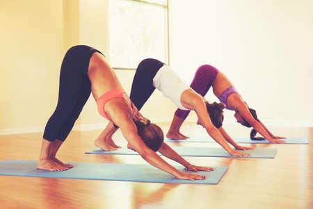 Groep van mensen ontspannen en het doen van yoga. Het beoefenen van Neerwaartse Dog. Wellness en gezonde levensstijl.