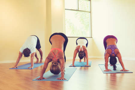 exercise room: Group of People Relaxing and Doing Yoga. Practicing Downward Dog. Wellness and Healthy Lifestyle.