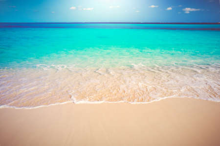 Tropical White Sand Beach and Sea, Travel Vacation Concept Background