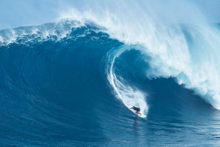 huge: MAUI, HI - JANUARY 16 2016: Professional surfer Joao Marco Maffini rides a giant wave at the legendary big wave surf break known as Jaws on one the largest swells of the year.