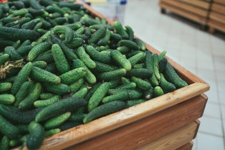 Fresh green cucumbers in wooden box with straw