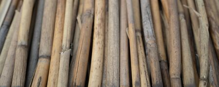 Texture of bamboo rods. A background with copy space