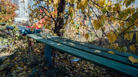 A bench in the Park strewn with yellow leaves in autumn.