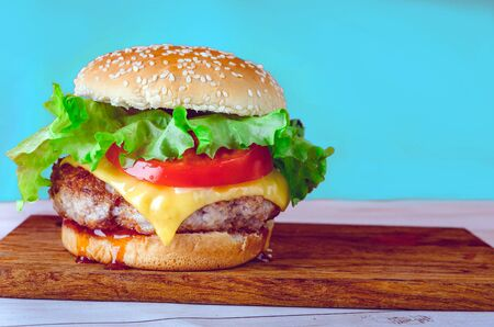 hamburger or sandwich. Delicious sandwich hamburger with meat, cheese and fresh vegetable. Imagens