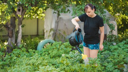 Concept of summer and garden care, organic products and eco-friendly lifestyle.