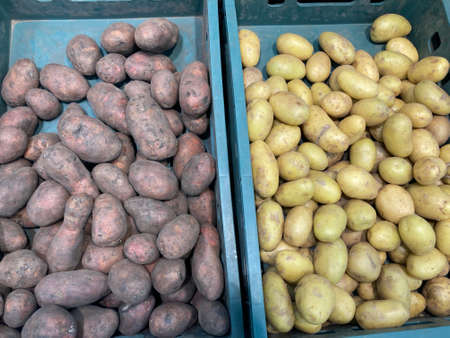 Close up of various potatoes in plastic boxes on supermarket counter. Concept of agriculture and organic food