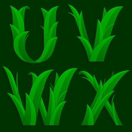grass font: Decorative Grass Initial Letters U, V, W, X. Vector illustration of alphabet letters in caps, the U, V, W, X in the grass design over a dark green background.
