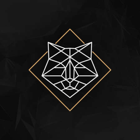 head of animal: The fox head Icon - Vector illustration. The fox head in outline low poly style on the dark abstract geometric background. Illustration