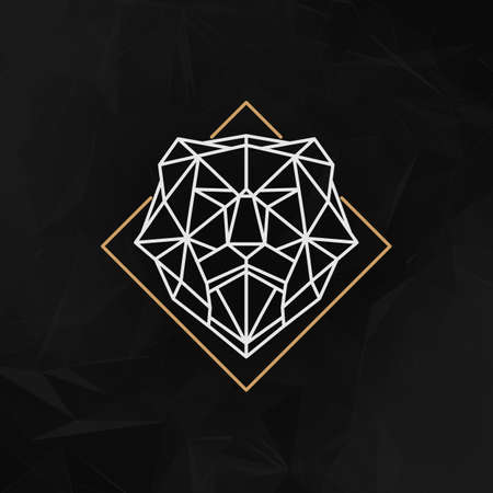 polygons: The lion head logo Icon - Vector illustration. The lion head in outline low poly style on the dark abstract geometric background.