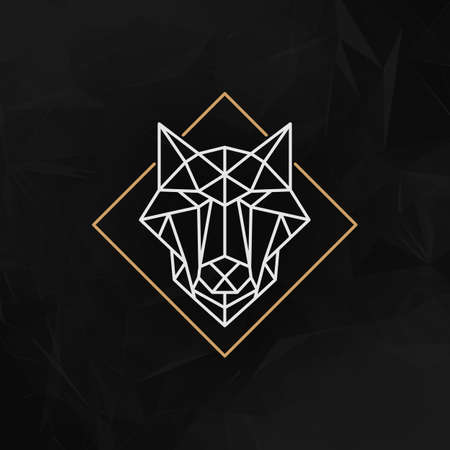 polygons: The wolf head Icon - Vector illustration. The wolf head in outline low poly style on the dark abstract geometric background.