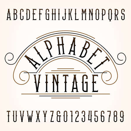 letters of the alphabet: Vintage alphabet font. Thin type letters and numbers.