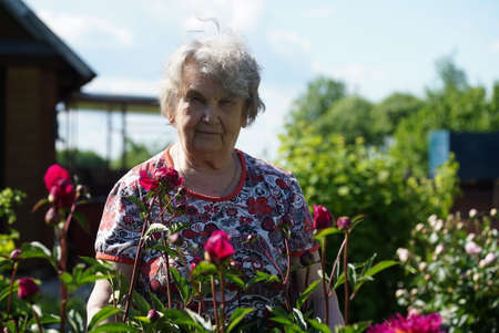 Portrait of old smiling woman in the park in the background of growing flowers as called peonies. Woman is charged energy of nature Stock fotó
