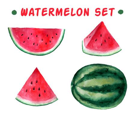 frutas tropicales: dibujado a mano de acuarela vector conjunto de sand�a. ejemplo de la comida org�nica. Vectores