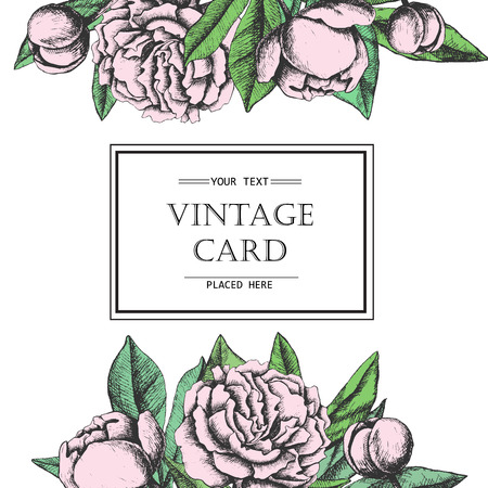 postcard background: Vintage elegant card with peony flowers. Black and white ink vector illustration. Great for wedding invitation or birthday card Illustration