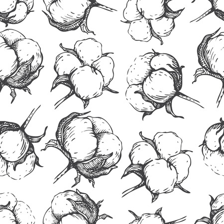 Vector seamless natural cotton engraving  pattern. Hand- draw rustic  illustration. Vectores