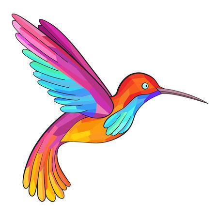 Colorful Colibri. Hummingbird. Great for company Logo.