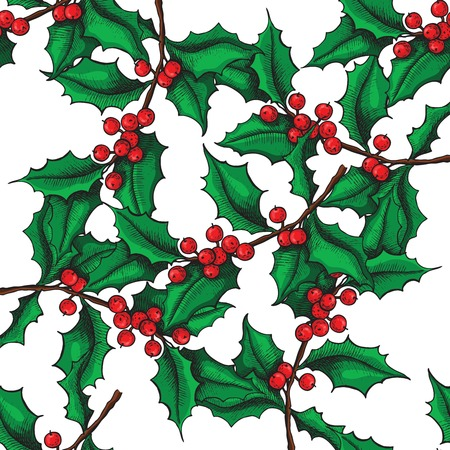 Vector seamless hand drawn Holly pattern. Christmas mistletoe vintage illustration. Christmas and holiday decor.