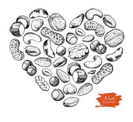 pinoli: Vector disegnata a mano i dadi illustrazione a forma di cuore. Inciso. amore Dadi per il vostro business promuovere