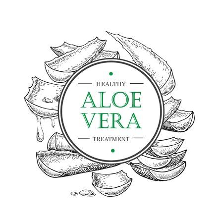 lable: botanical Aloe Vera. Engraved illustration. Lable