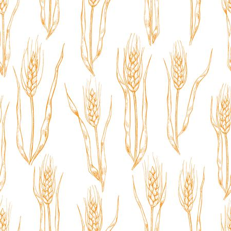 etch: Vector hand drawn wheat ears seamlless pattern. Great backround for backery.