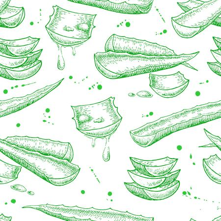 Vector seamless hand drawn botanical Aloe Vera pattern. Engraved illustration. Ilustração