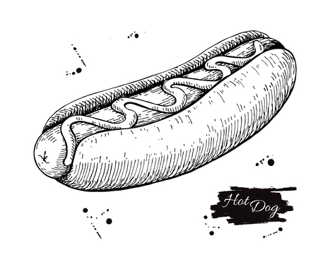 Vector vintage hot dog drawing. Hand drawn monochrome fast food illustration. Great for menu, poster or label. Vectores