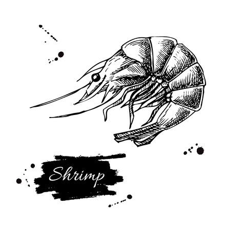벡터 빈티지 새우 그리기입니다. 손으로 그린 단색 해산물 그림입니다. 메뉴, 포스터 또는 레이블을 위해 중대 한입니다.