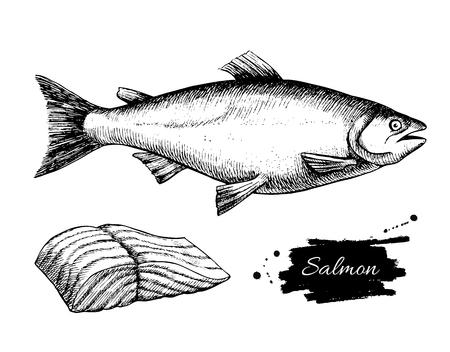 벡터 빈티지 연어 드로잉입니다. 손으로 그린 단색 해산물 그림입니다. 메뉴, 포스터 또는 레이블을 위해 중대 한입니다.