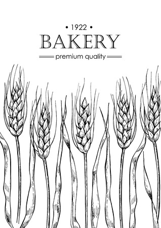 promote: Vector vintage bread and bakery illustration. Hand drawn banner. Great for label, banner, flyer, card, business promote.