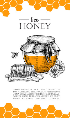 Vector honey bee hand drawn illustrations. Honey jar, bee, honeycomb, flower objects. Honey banner, poster, label, brochure template for business promote. Ilustração
