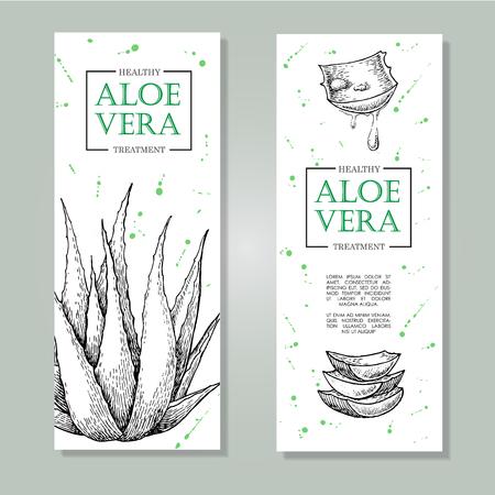 aloe vera: Vector aloe vera hand drawn illustrations. Detailed drawing. Aloe Vera banner, poster, label, brochure template for business promote.